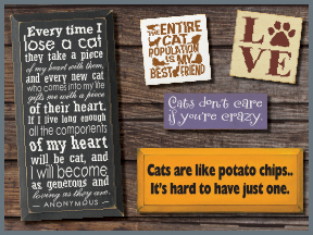 Cat Wooden Signs With Sayings And Quotes